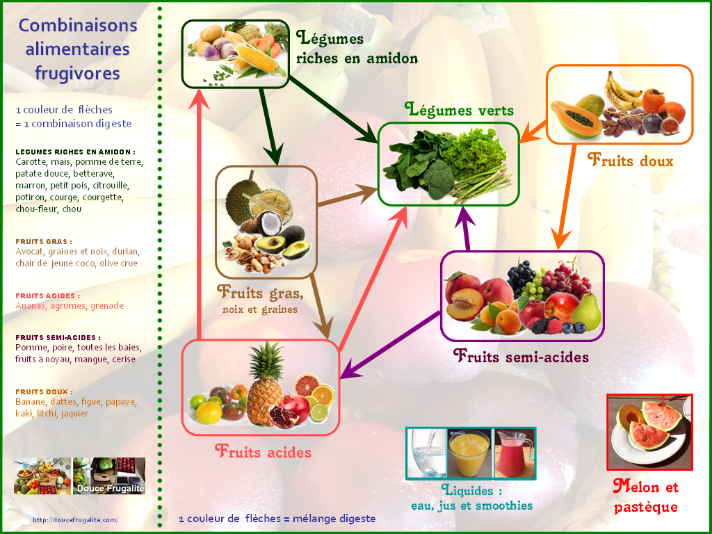 combinaisons alimentaires frugivores