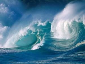 mer vagues René Quinton